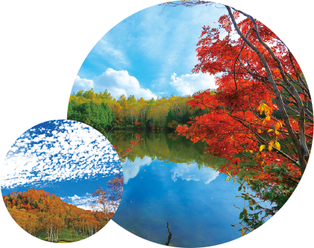 グリーンシーズン10月のイベント:志賀高原の紅葉