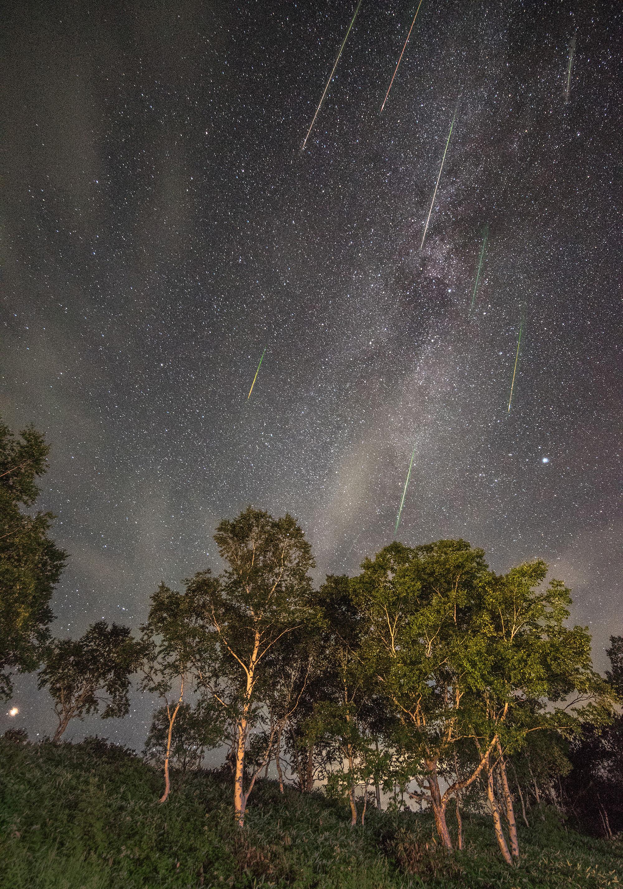 星降る夜「ペルセウス座流星群」