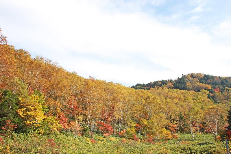 熊の湯・笠ヶ岳(笠岳)・平床の画像