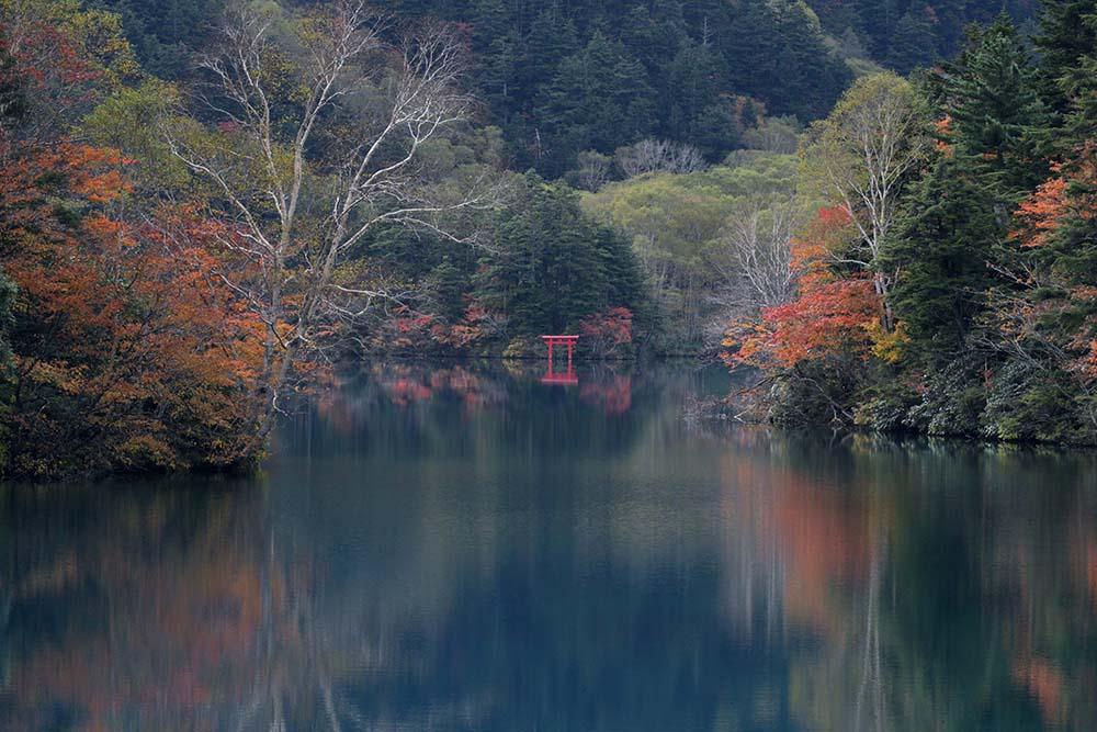 四十八池・大沼池の画像